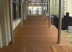 小学校渡り廊下